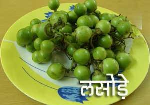 लसोड़े का अचार – Gunda Pickle Recipe – Lasoda ka Achar